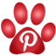 The Pets Pal on Pinterest